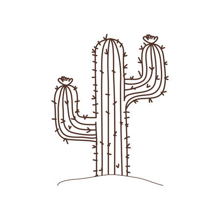 cactus in landscape isolated icon vector illustration design