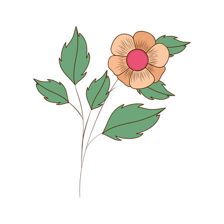 beautiful flowers with leafs isolated icon vector illustration design Archivio Fotografico - 129166361