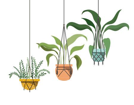 houseplants on macrame hangers icon vector illustration design Stock Illustratie