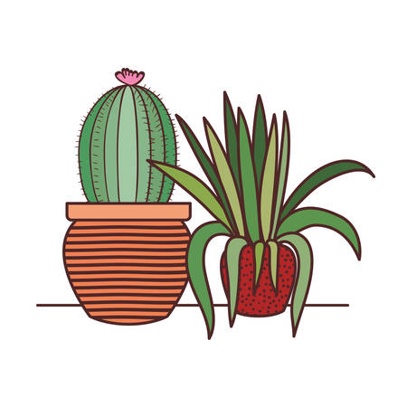 cactus with potted isolated icon vector illustration design Illustration