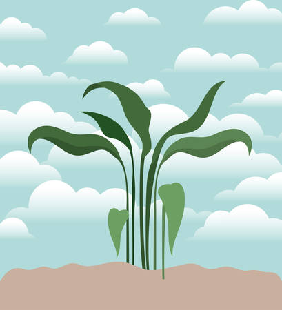 plant of garden planted vector illustration design