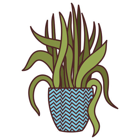 houseplant with potted isolated icon vector illustration design Çizim