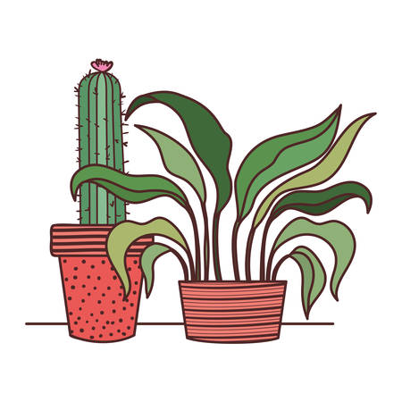 cactus with potted isolated icon vector illustration design Çizim