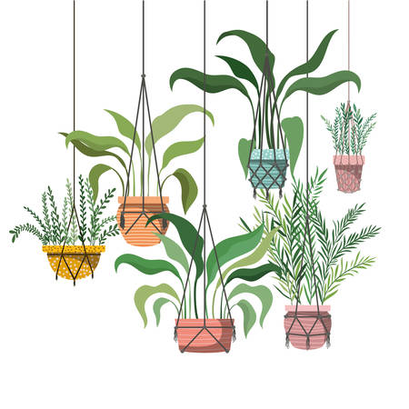houseplants on macrame hangers icon vector illustration design  イラスト・ベクター素材