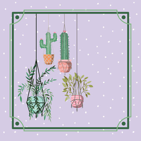 frame with houseplants and cactus hanging in macrame vector illustration design Çizim