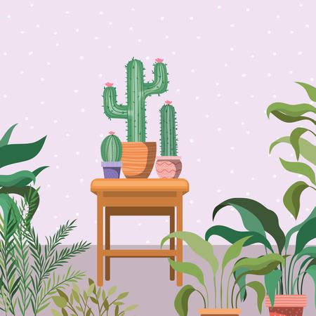 cactus houseplants in wooden chair garden scene vector illustration design