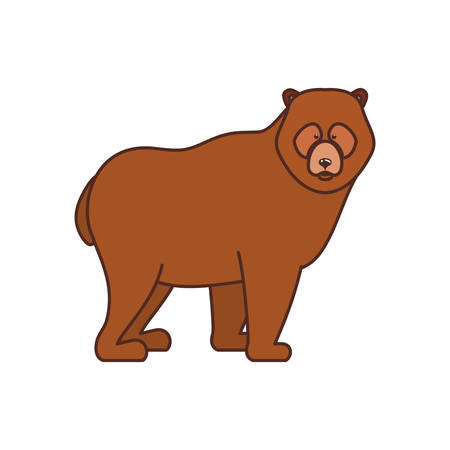 Bear animal design, forest canada life nature and fauna theme Vector illustration