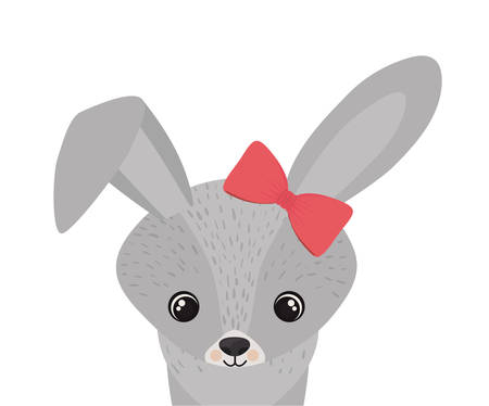 cute and adorable bunny with frame vector illustration design