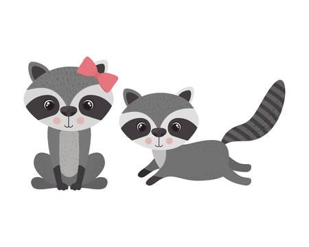 cute couple of raccoons on white background vector illustration design Ilustração