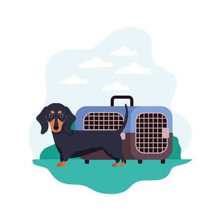 dog and pet transport box with background landscape vector illustration design 일러스트