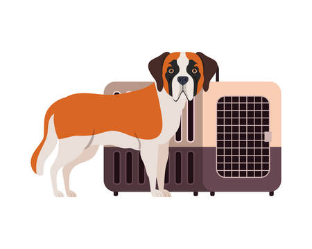 dog and pet transport box on white background vector illustration design 스톡 콘텐츠 - 129830908