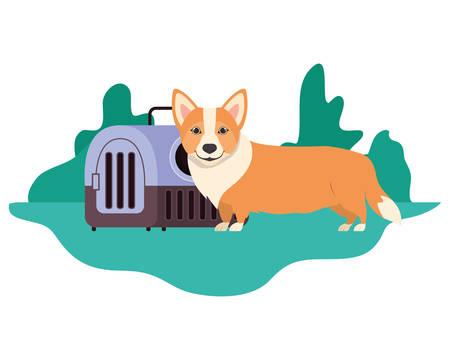 dog and pet transport box with background landscape vector illustration design 스톡 콘텐츠 - 129830910