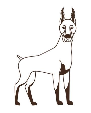 silhouette of cute doberman dog on white background vector illustration design Archivio Fotografico - 129831005