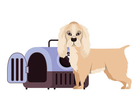 dog and pet transport box on white background vector illustration design 스톡 콘텐츠 - 129831037