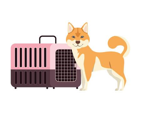 dog and pet transport box on white background vector illustration design 스톡 콘텐츠 - 129831134