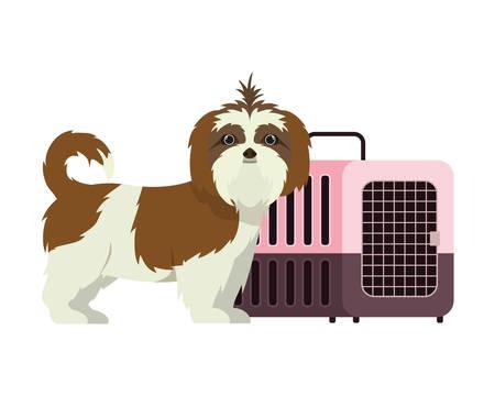 dog and pet transport box on white background vector illustration design 스톡 콘텐츠 - 129831151