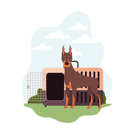 dog and pet transport box with background landscape vector illustration design 스톡 콘텐츠 - 129831282