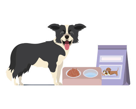 dog with bowl and pet food on white background vector illustration design