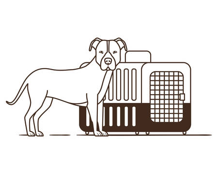 silhouette of dog and pet transport box on white background vector illustration design 스톡 콘텐츠 - 129831295