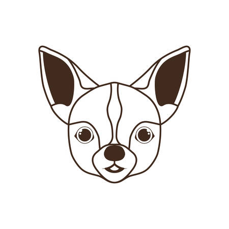 head of cute chihuahua dog on white background vector illustration design