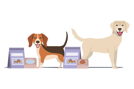 dogs with bowl and pet food on white background vector illustration design