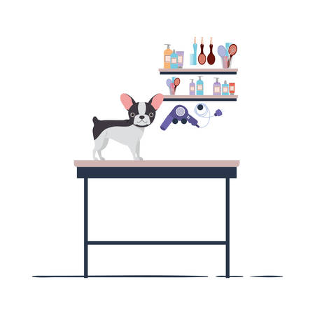 dog on hairdressing table with white background vector illustration design