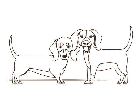silhouette of cute and adorable dogs on white background vector illustration design