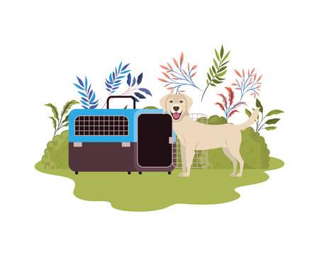 dog and pet transport box with background landscape vector illustration design Stock Illustratie