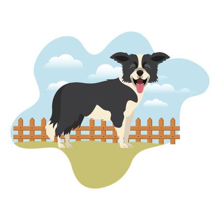 cute border collie dog with background landscape vector illustration design