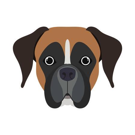 Kopf des netten Boxerhundes auf weißem Hintergrundvektorillustrationsdesign