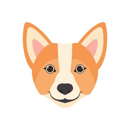 head of cute welsh corgi dog on white background vector illustration design