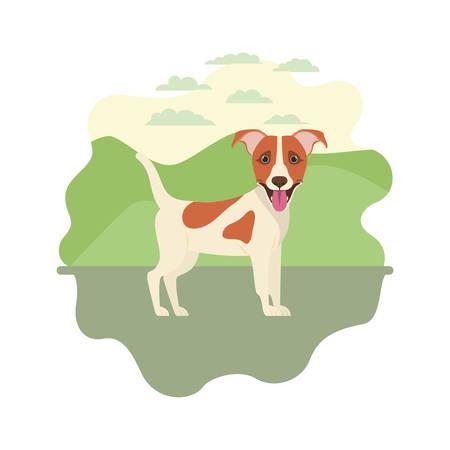 cute jack russell rerrier dog on white background vector illustration design Banque d'images - 129373099