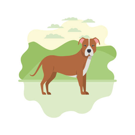cute pitbull dog on white background vector illustration design Banque d'images - 129373103