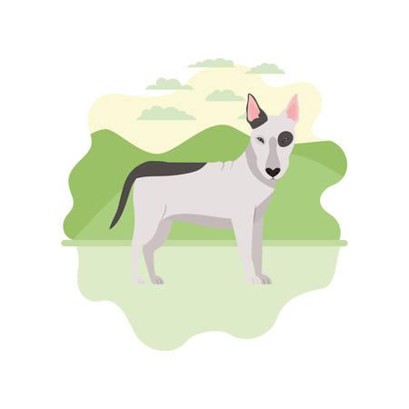 cute bull terrier dog on white background vector illustration design Banque d'images - 129373548