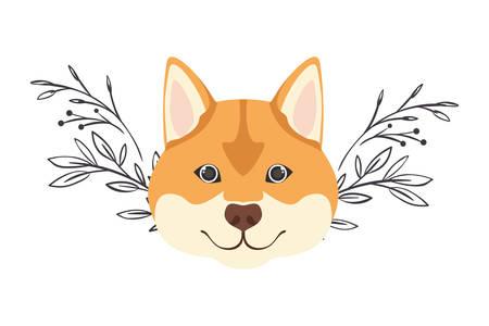 head of cute akita inu dog on white background vector illustration design