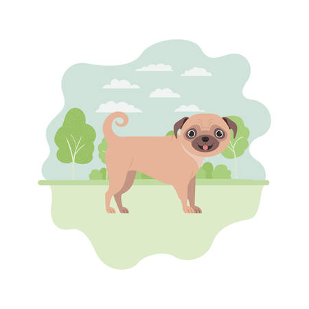 cute pug dog on white background vector illustration design Banque d'images - 129376442