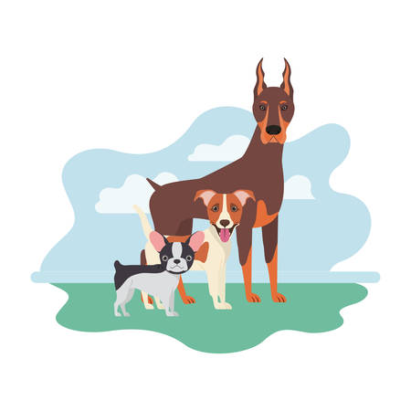 set of adorable dogs on white background vector illustration design Illusztráció