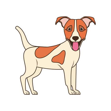 cute jack russell rerrier dog on white background vector illustration design 일러스트