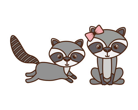 cute couple of raccoons on white background vector illustration design Stock Illustratie