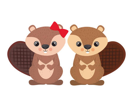 cute couple of chipmunk on white background vector illustration design
