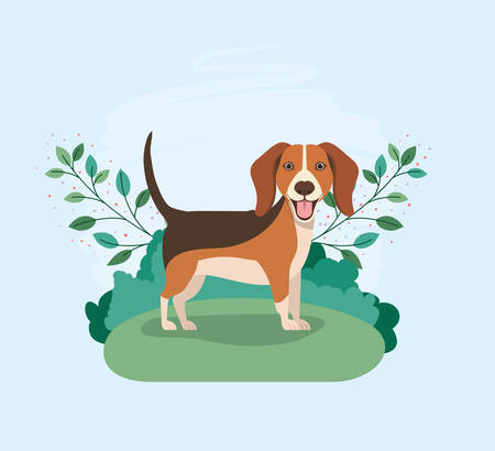 cute dog beagle pet in the camp vector illustration design Banco de Imagens - 129423578