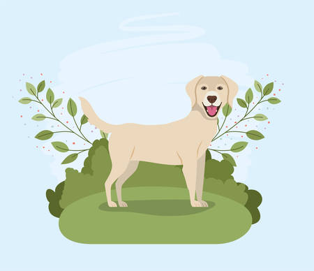 cute labrador retriever dog pet character in the camp vector illustration design