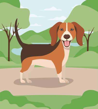 cute dog beagle pet in the camp vector illustration design Banco de Imagens - 129424134