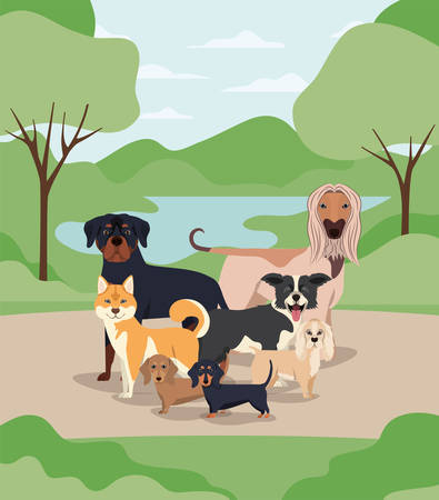 group of dogs pets in the camp characters vector illustration design 矢量图像
