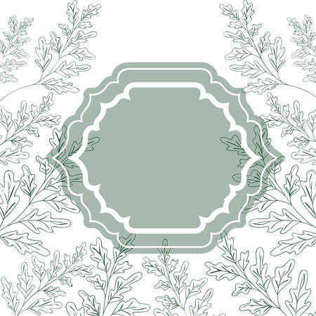 frame with plants and herbs isolated icon vector illustration desing 写真素材 - 129472945