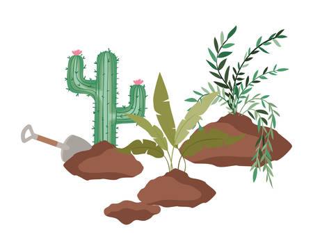 cactus and tree to plant isolated icon vector illustration design  イラスト・ベクター素材