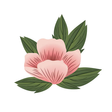 beautiful flower with leafs isolated icon vector illustration design Standard-Bild - 129498988
