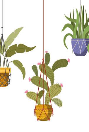 houseplants on macrame hangers icon vector illustration design Иллюстрация