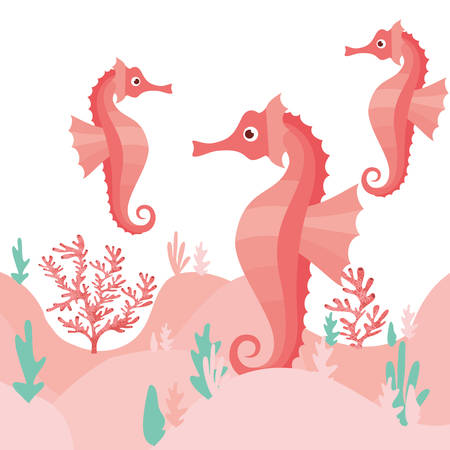pattern seahorse and seaweed isolated icon vector illustration design