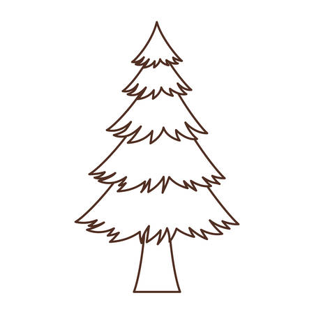 Pine Tree design, Nature plant season environment natural and abstract theme Vector illustration